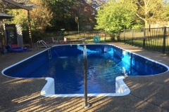 Replacement Liner with Steps and Diving Board